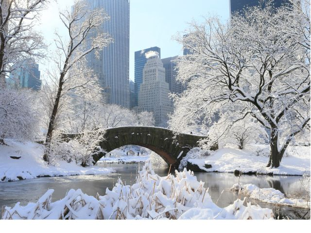 Central park bridge in the winter